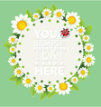 Floral and decorative template vector image vector image