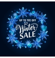 winter sale gold poster vector image