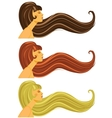 Long brown blond and red hair vector image vector image