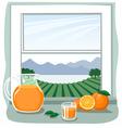 Oranges and juice in front of open window vector image vector image
