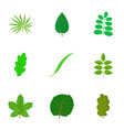 leaf icons set cartoon style vector image