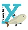 English animals zoo alphabet letter X vector image