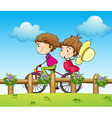 A couple riding a bicycle vector image vector image
