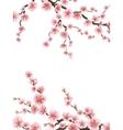 Pink sakura cherry blossoms EPS 10 vector image