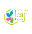 5 leaf logo template design vector image