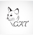 a cat head on white background pet animal easy vector image