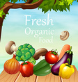 Poster design with many vegetables vector image