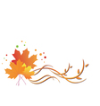 autumn flora vector image