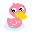 Cute little pink rubber duck isolated on white vector image