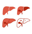 liver icon set on white background vector image