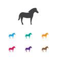 of zoology symbol on stallion vector image