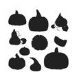 Pumpkin set vector image