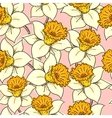 seamless pattern with daffodil vector image