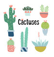 set of cute hand drawn cactus and succulent plants vector image