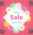 spring sale background with beautiful colorful vector image
