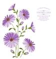 Chrysanthemum flower head vector image