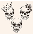 Hand drawn set sketch sculls tattoo design line vector image