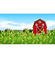 Scene with corn field vector image