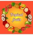 Wreath of tropical fruits on bright background vector image