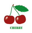Cherries isolated object vector image