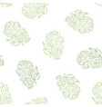Coriander hand drawn seamless pattern vector image