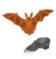 Halloween bat and skull vector image