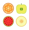 Fruits on a white background vector image