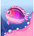 pink fish vector image