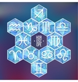 Zodiac signs and constellation into hexagonal vector image