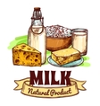 Milk Product Sketch Concept vector image vector image