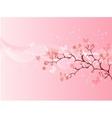 Japanese cherry blossom vector image