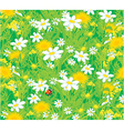 Ladybug and field flowers vector image vector image