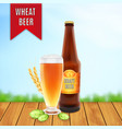 beer glass with hop plant wheat and bottle vector image