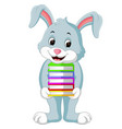 rabbit carrying books cartoon vector image