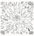 black drawn herbs plants and flowers vector image