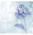 Hand drawn card with rose on blue paper background vector image
