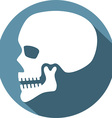 Human Skull Icon vector image vector image