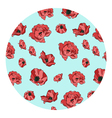 pattern of red poppies vector image