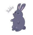 Rabbit isolated Domestic pets Sticker for kids vector image
