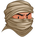 Terrorist covered his face with cloth vector image