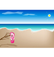 A Sandal on The Beach vector image