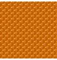 Chinese orange yellow gold seamless pattern dragon vector image