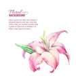 Card with blooming lily vector image vector image