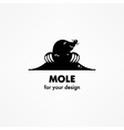 Cute cartoon mole vector image