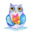 funny owl with a present vector image