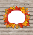 Autumn label with leaves maple wooden texture vector image vector image