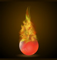 burning red ball on fire flame vector image vector image