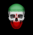 Iranian flag skull vector image vector image