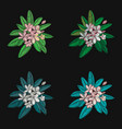 set of floral pattern with flowers embroidery vector image