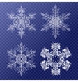 Decorative Snowflakes set Background pattern for vector image